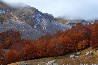 Autunno in Val di Rose
