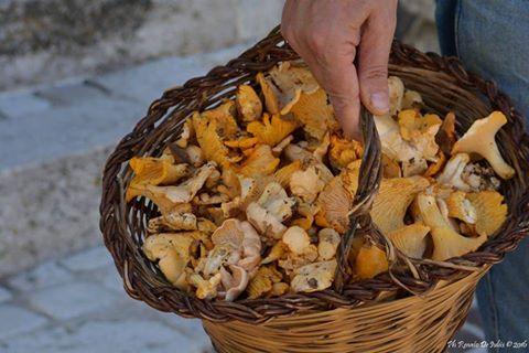 Abruzzo, fotografia, sapori-d-abruzzo, abruzzo-a-tavola